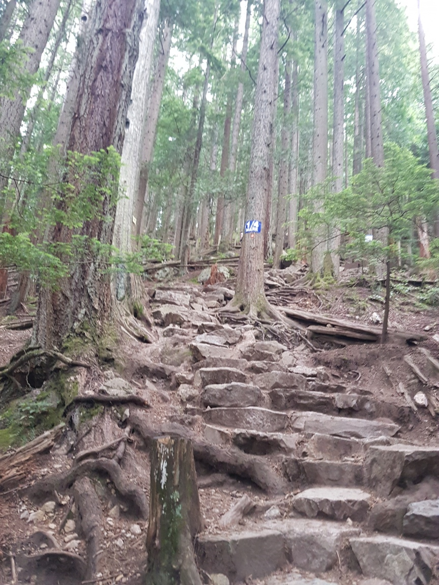 Hiking: Grouse Grind (Vancouver, CA)