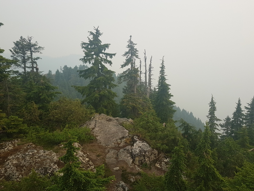Hiking: Mount Fromme (Vancouver,CA)